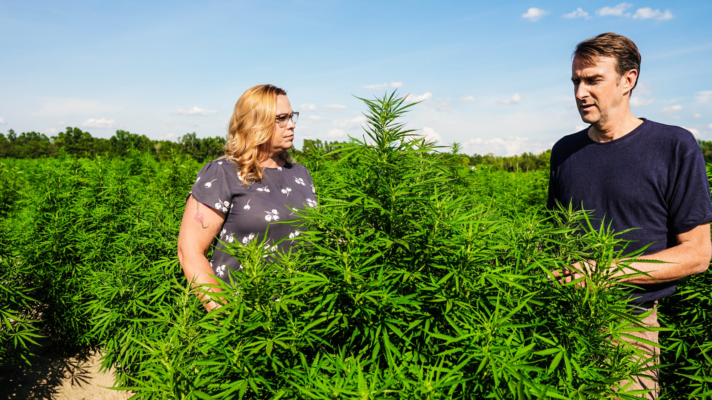 SC CBD oil company merges with Colorado manufacturer to