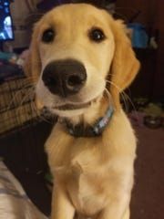 Charlie remains missing as of Monday. The Bocker family thanks everyone who continues to search for him.