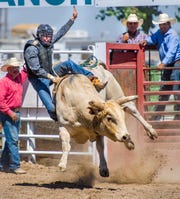 A rider tries to hang on during the bull riding competition.