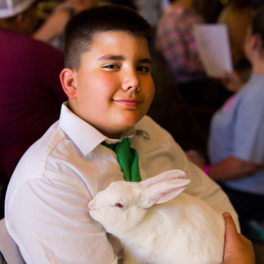 Sawyer Aldridge, 11, holds his rabbit, Buckwheat, while waiting to be judged.