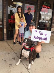 "This is Tate, a Rescue One ""long timer."" He finally found his family on Saturday."