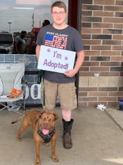 This  pooch was one of 32 Rescue One dogs who were adopted on Saturday.