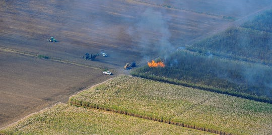 Sugar fields burn near Indiantown, north of the C-44 canal Wednesday, Jan. 21, 2015 in Martin County.