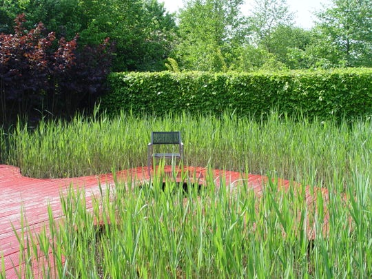 Living spaces can be coordinated to exist within cattail stands where conditions are marshy.