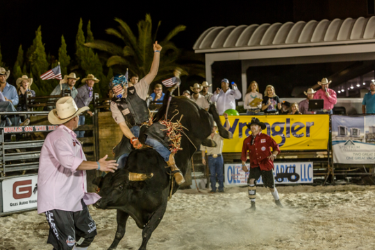 Flora Bama Bulls On The Beach Event What You Need To Know