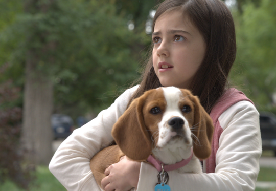 """Abby Ryder Fortson holds her dog in """"A Dog's Journey."""""""