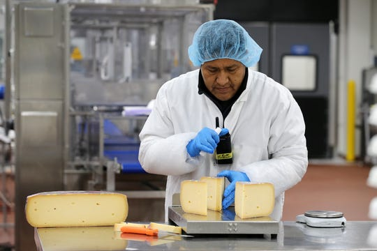 Francisco Castro of Toms River, production supervisor who has been with the company for 23 years, slices a wheel of Beemster Gouda cheese for packaging at the Tipico Products Co., Inc. in Lakewood, NJ Monday, August 19, 2019.