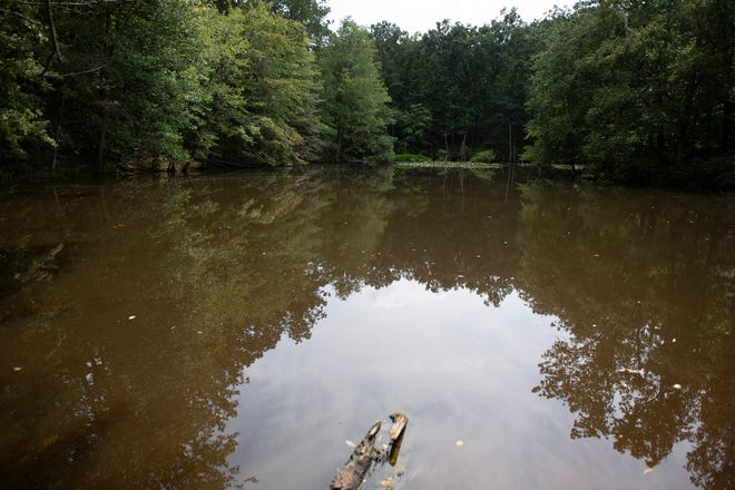 A lake inside the Timber Creek Dog Park Tuesday, Aug. 20, 2019 in Blackwood, N.J.