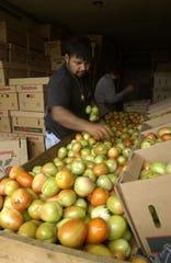 Con la medida se verán beneficiados los productores de EEUU, según autoridades.
