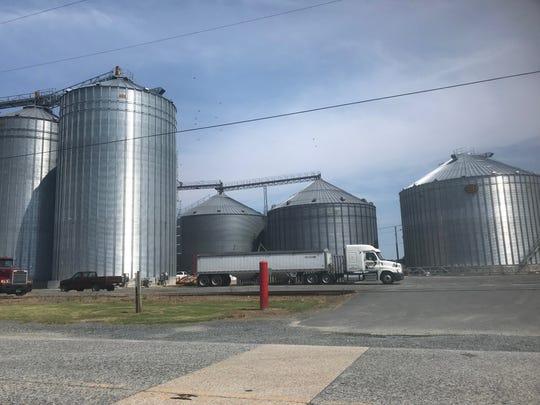 Associated Grain, Inc. in Parksley, Virginia