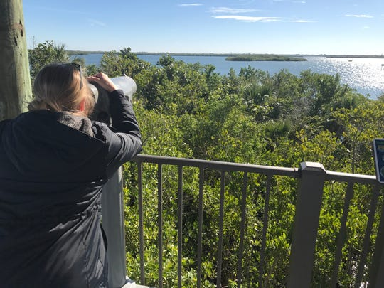 Entertainment reporter and columnist Laurie K. Blandford gets a closer look at Pelican Island through a spotting scope.