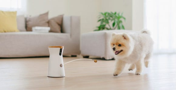 Best gifts for wives 2020: Furbo Smart Pet Camera.