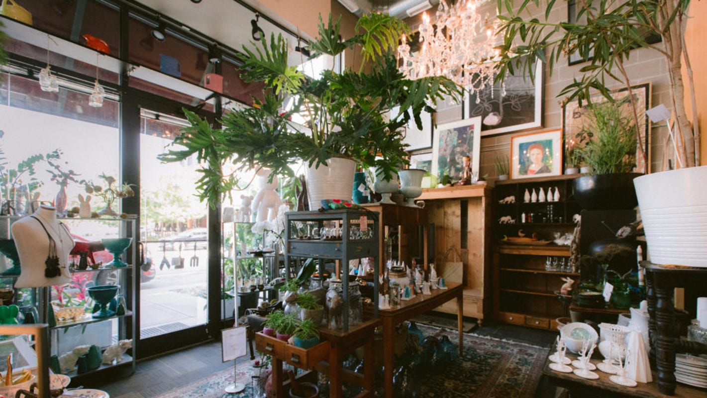 Petals + Moss is the East Village's newest plant and gift shop in Des Moines
