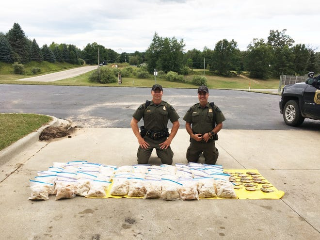 Conservation Officers Joshua Wright (left) and Mark Papineau confiscated more than 1,400 illegal panfish from a Gladwin, Michigan, man. Papineau had received several tips about a man suspected of poaching larger numbers of fish from Lake Lancer, located in Gladwin County.