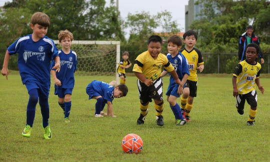The NAPA Rovers FC and the Guam Shipyard Wolverines Blue play in a U6 Division match of the Triple J Auto Group Robbie Webber Youth Soccer League at the Guam Football Association National Training Center in this file photo.