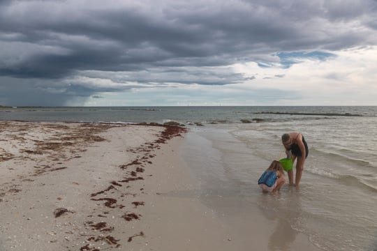 Allison Martone, right, and her daughter, Giovanna Martone, 8, left, collect shells on Naples beach on Wednesday, Aug. 21, 2019, south of Naples Pier. Clumps of red seaweed have been washing up on Naples beaches this summer.
