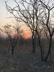 A view Aug. 20, 2019, of an area that has been scorched by fire in the state of Mato Grosso, Brazil.