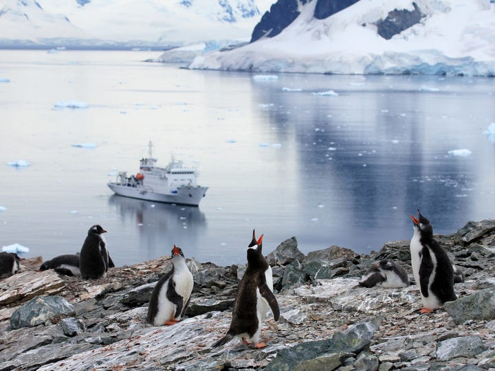 3.Antarctica exploration  Price: 14 days for approximately $14,170 to $29,490 Why it's worth the money:  One of the last great frontiers on Earth, the White Continent is remote, rugged and untamed. It's also a window into the wilderness and a place to see stunning landscapes, penguins, whales and glaciers as you live aboard a small ship with like-minded National Geographic explorers. You'll have the chance to kayak, hike, cross-country ski and snowshoe on a continent only the most intrepid travelers dare to visit.