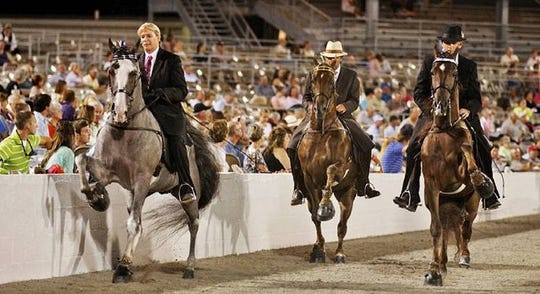 Horses shown during an appearance a couple years ago at a Tennessee Walking Horse National Celebration.