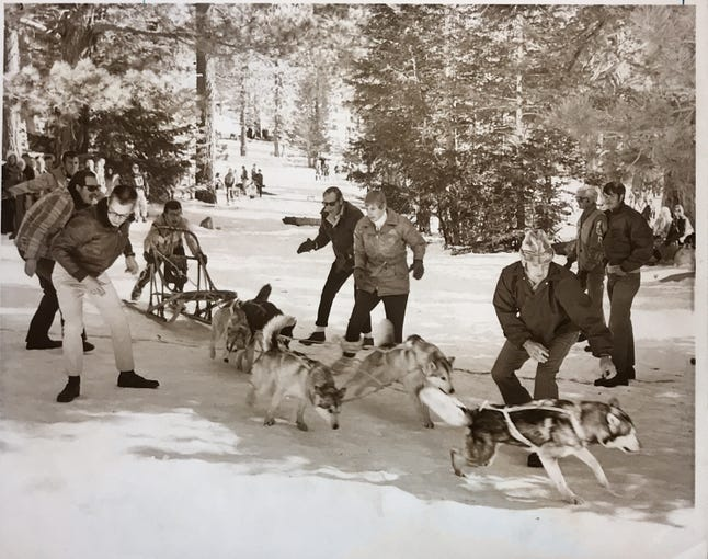 Palm Springs Aerial Tramway dog sled races
