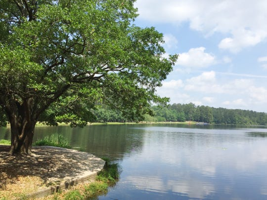 Sesquicentennial State Park in Columbia