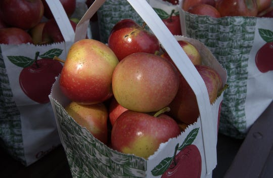 The Franklin Cider Mill, which opens for the season this weekend, sells bags of fresh apples.
