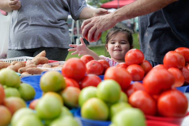Evelynn Hubbs, 3, reaches for a tomato while her parents shop at the Tallahassee Farmers Market Saturday, Aug. 24, 2019.