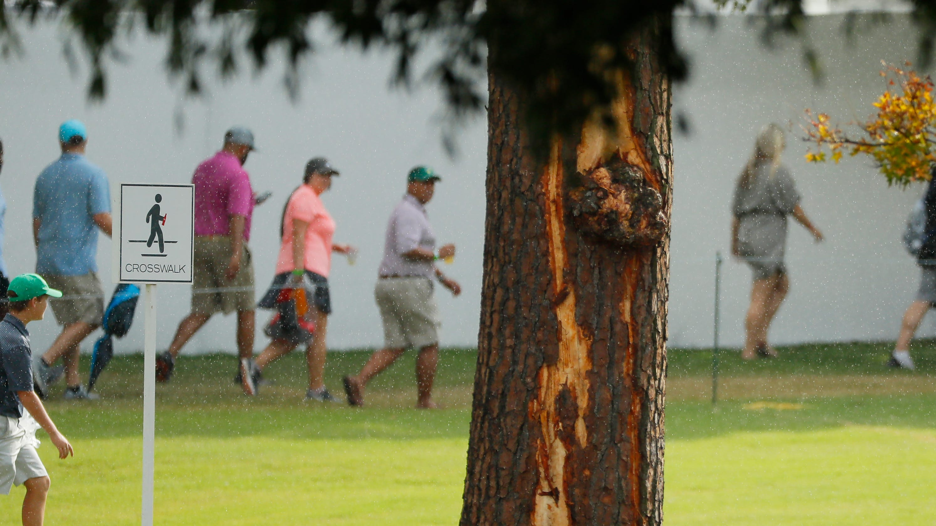 Six fans injured after lightning strikes golf course at Tour Championship