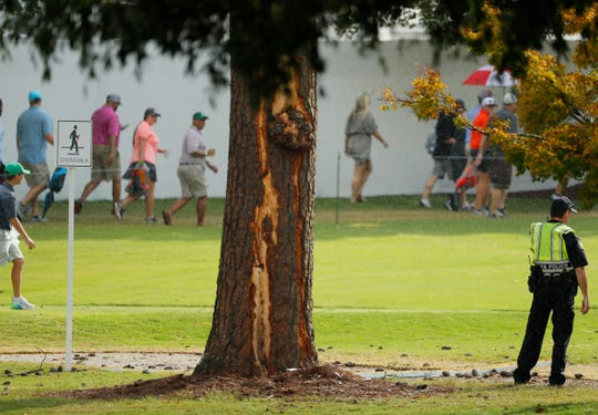 A tree shows lightning damage after a strike at East Lake Golf Club during the Tour Championship.
