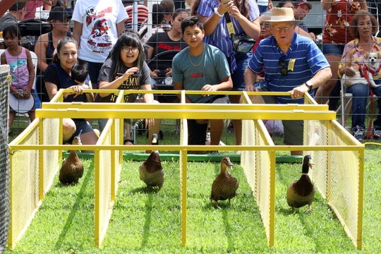 Only in Deming, NM can a live duck race on a dry track.