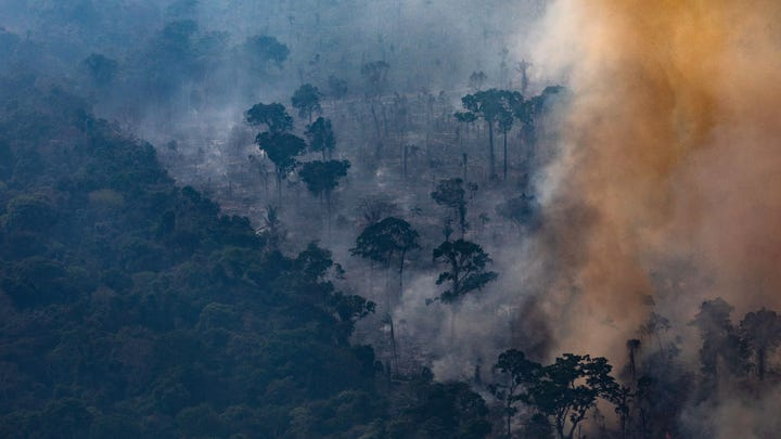 A fire burns in a section of the Amazon rain forest in Porto Velho, Brazil. According to INPE, Brazil's National Institute of Space Research, the number of fires detected by satellite in the Amazon region this month is the highest since 2010.
