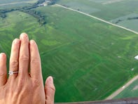 This is possibly the most Iowan marriage proposal of all time