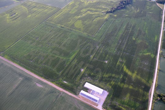 From a hot air balloon, the newly engaged couple of Shelby Chapman and Aaron Adam look down over the message spelled Adam has spelled out in corn on August 2, 2019.
