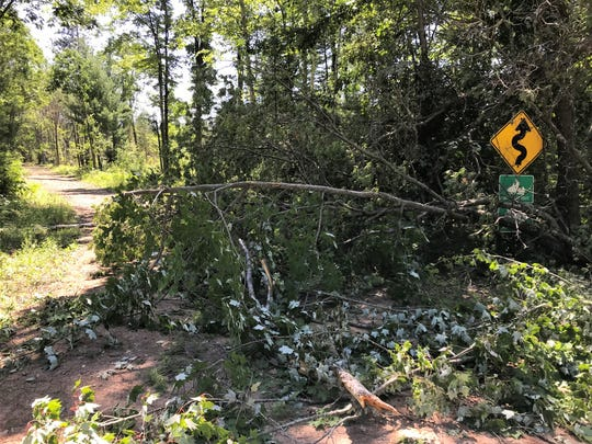 Trees block Butler Spring Road at Highway 64 after the July 18-19 storm in Oconto County.