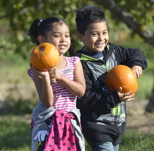 Altmeyer Elementary School student Oliver Acevedo, right, and his cousin Sofia smiles as they show their freshly icked pumpkins to their parents while on a 2013 field trip at Hillside Apples in Casco.