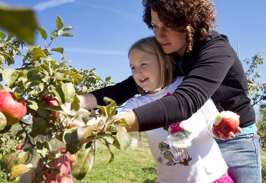 Rachel Drexler of Stratford helps her daughter, Peyton, pick honeycrisp apples Monday at Rock Ridge Orchard in Edgar in 2013.