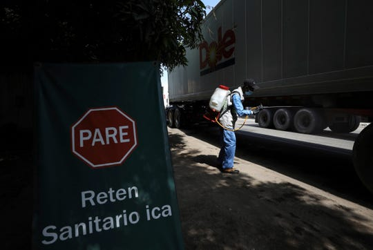 A container truck full of bananas for export is disinfected at a government-run sanitary stop in Mingueo, Colombia, Friday, Aug. 23, 2019. Special measures have been taken to stop a destructive disease from spreading, like sanitary controls at the entrance to plantations and roadblocks where trucks traveling between banana farms and ports are disinfected.