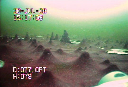 Images obtained of the microbial mat at the bottom of the Middle Island Sinkhole in Lake Huron off the shoreline of Alpena.