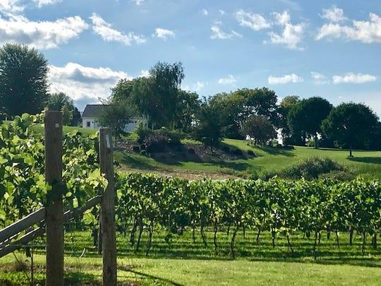 Silarian Vineyards