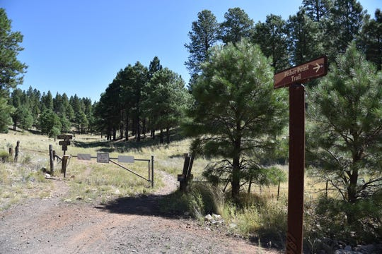 The Flagstaff Urban Trails System connects with Coconino National Forest trails.