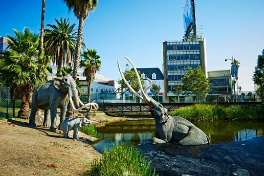 La Brea Tar Pits is an Ice Age fossil site that's being actively excavated in the middle of Los Angeles.
