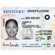 Kentucky driver's license
