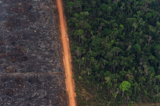 A lush forest next to a field of charred trees in Vila Nova Samuel, Brazil, Tuesday, Aug. 27, 2019. Lingering smoke in the Amazon caused concern Tuesday among Brazilians who say that respiratory problems have increased as fires in the region rage.