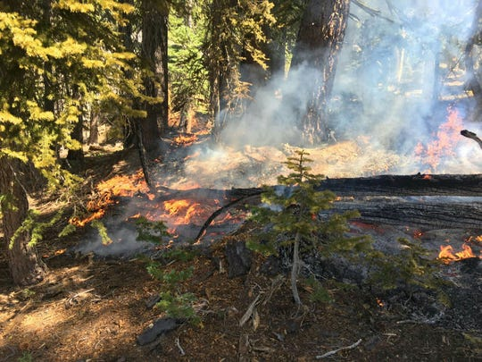 Illegal campfires, such as one that escaped a fire ring in the Meiss Country area on Monday, August 26, 2019, are a problem in the Lake Tahoe Basin.