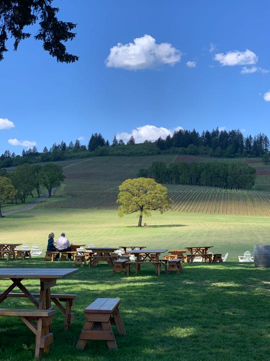 A view of the tire swing from the tasting room at Stoller Family Estate.