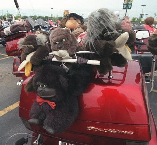 Many Goldwing riders display stuffed animals on their bikes.