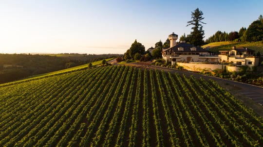 The Willamette Valley Vineyards in Oregon went to higher elevations to plant in reaction to warming temperatures.