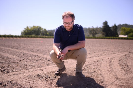 Dan Petroski, winemaker with Larkmead Vineyards in Napa Valley, samples the soil at a research block where he and his team are planting experimental wine crops with an eye toward seeing what varietals may be better suited to the higher temperatures brought about by climate change.