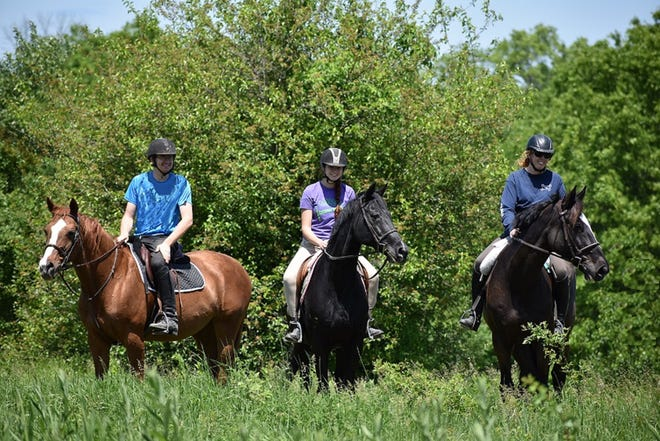 Lord Stirling Stable offers trail rides for novice riders age 9 and older.