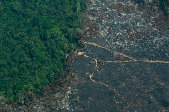 A burned area of Amazon rainforest is seen in the Biological Reserve Serra do Cachimbo, at the border with the Menkragnoti indigenous reserve of the Kayapo indigenous group in Altamira, Para state, Brazil, on Wednesday.